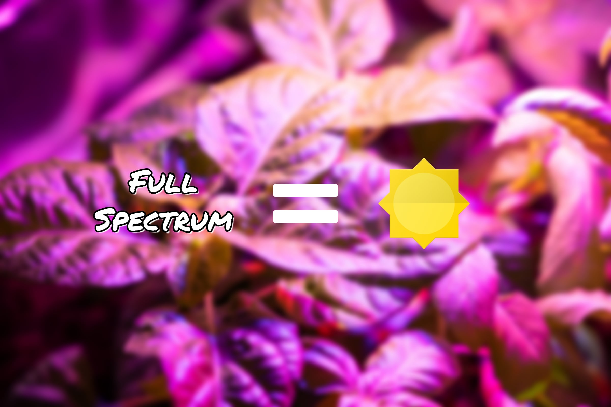 Full Spectrum Equals Sun