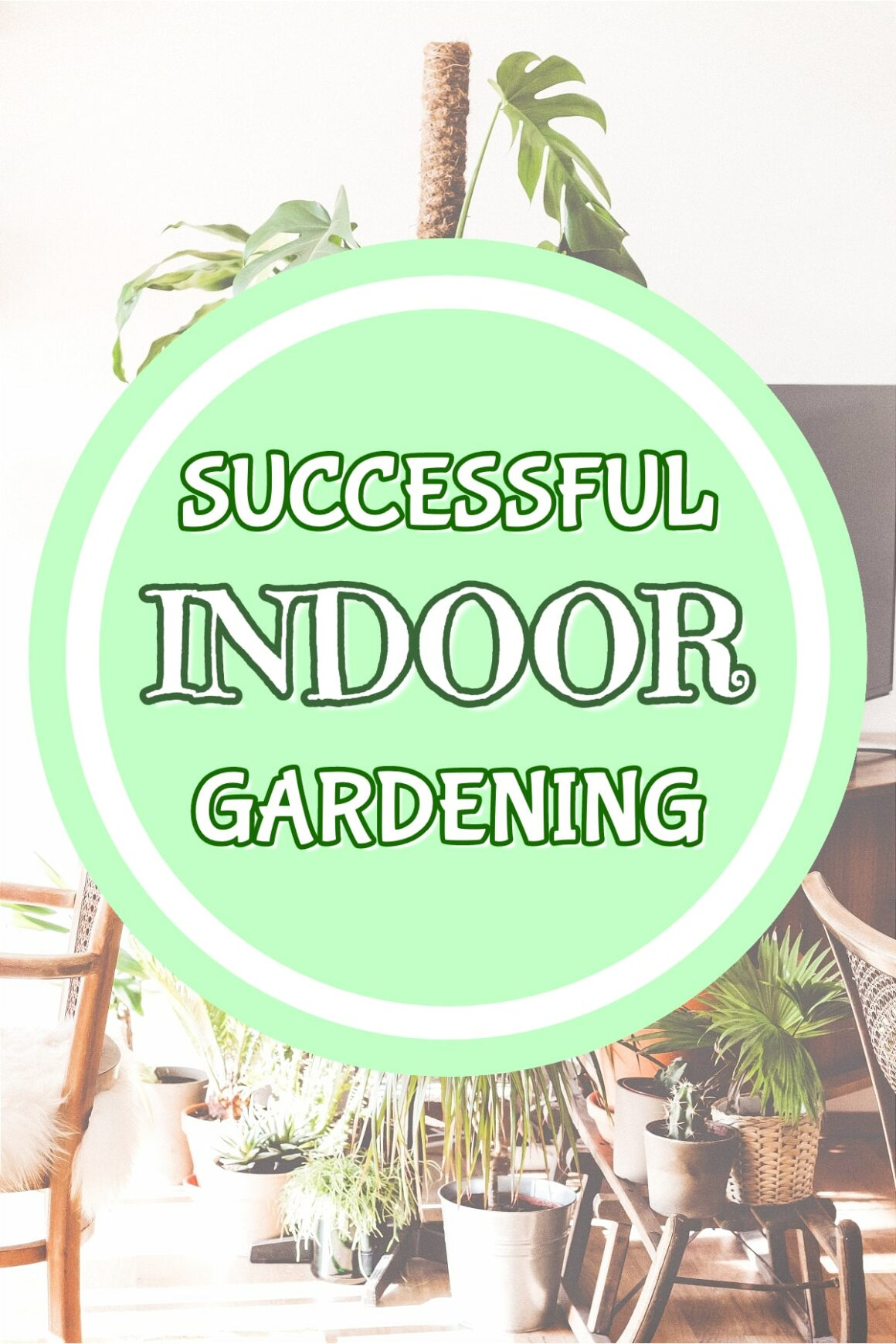 Successful Indoor Gardening