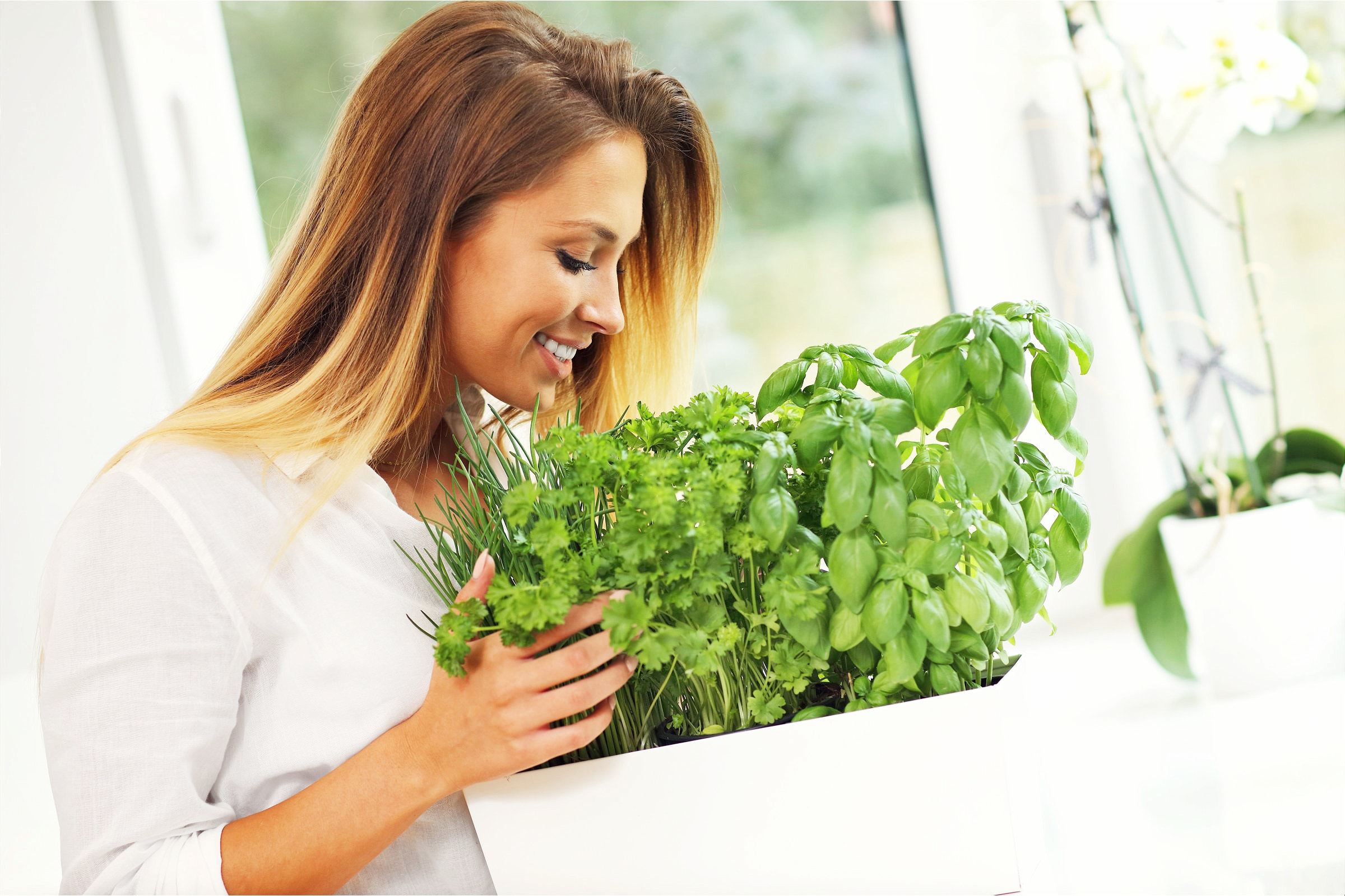 Woman Growing Herbs In The Kitchen