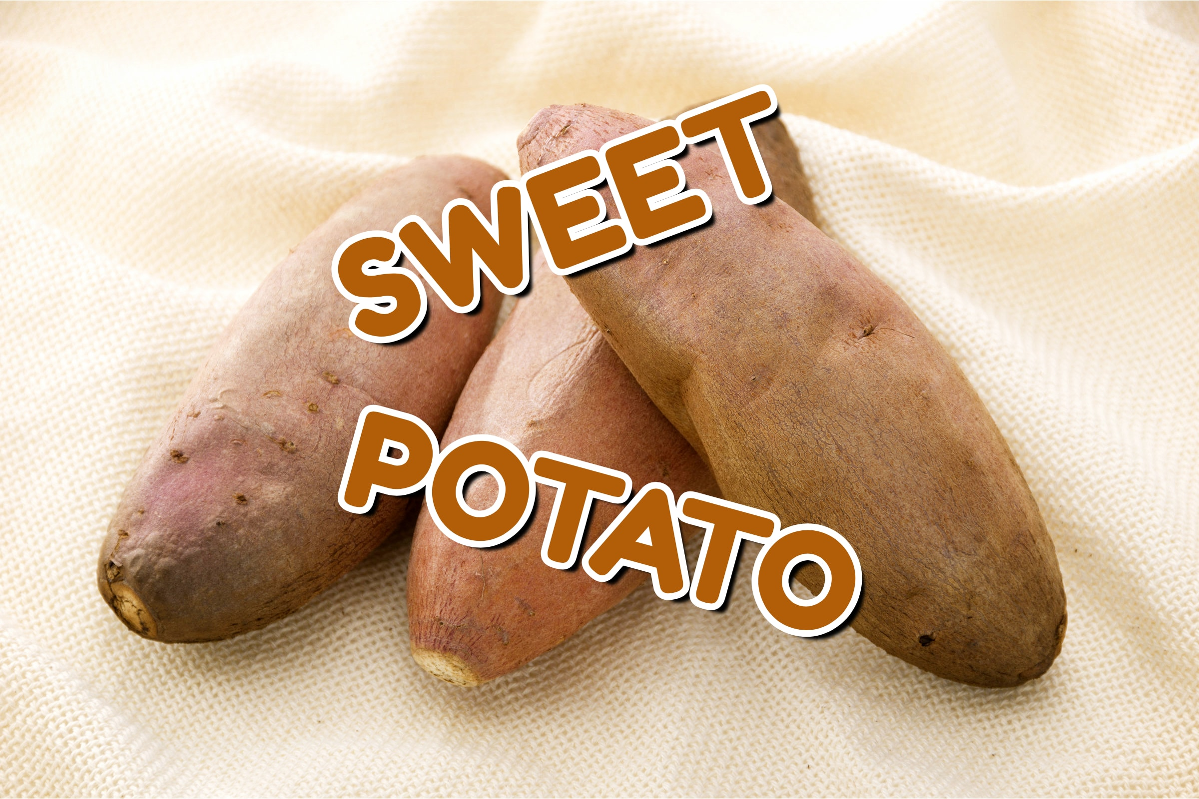 What Is The Sweet Potato Plant?