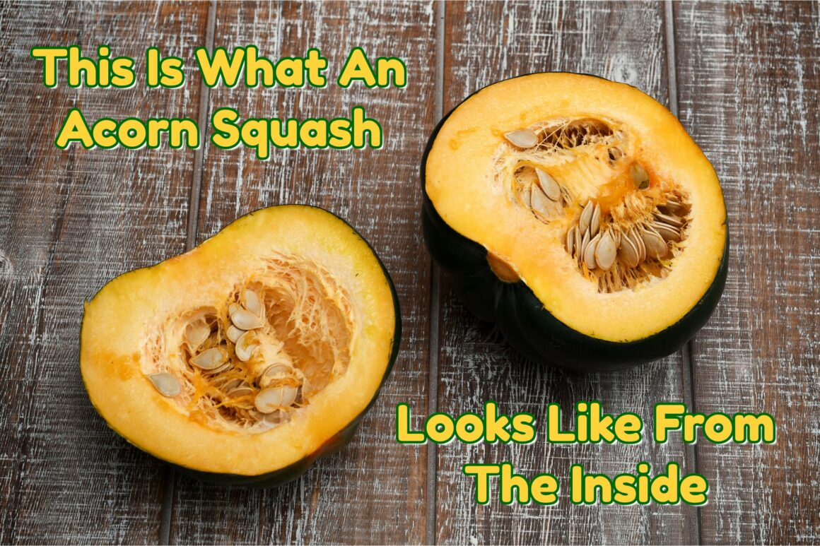 Acorn Squash From The Inside