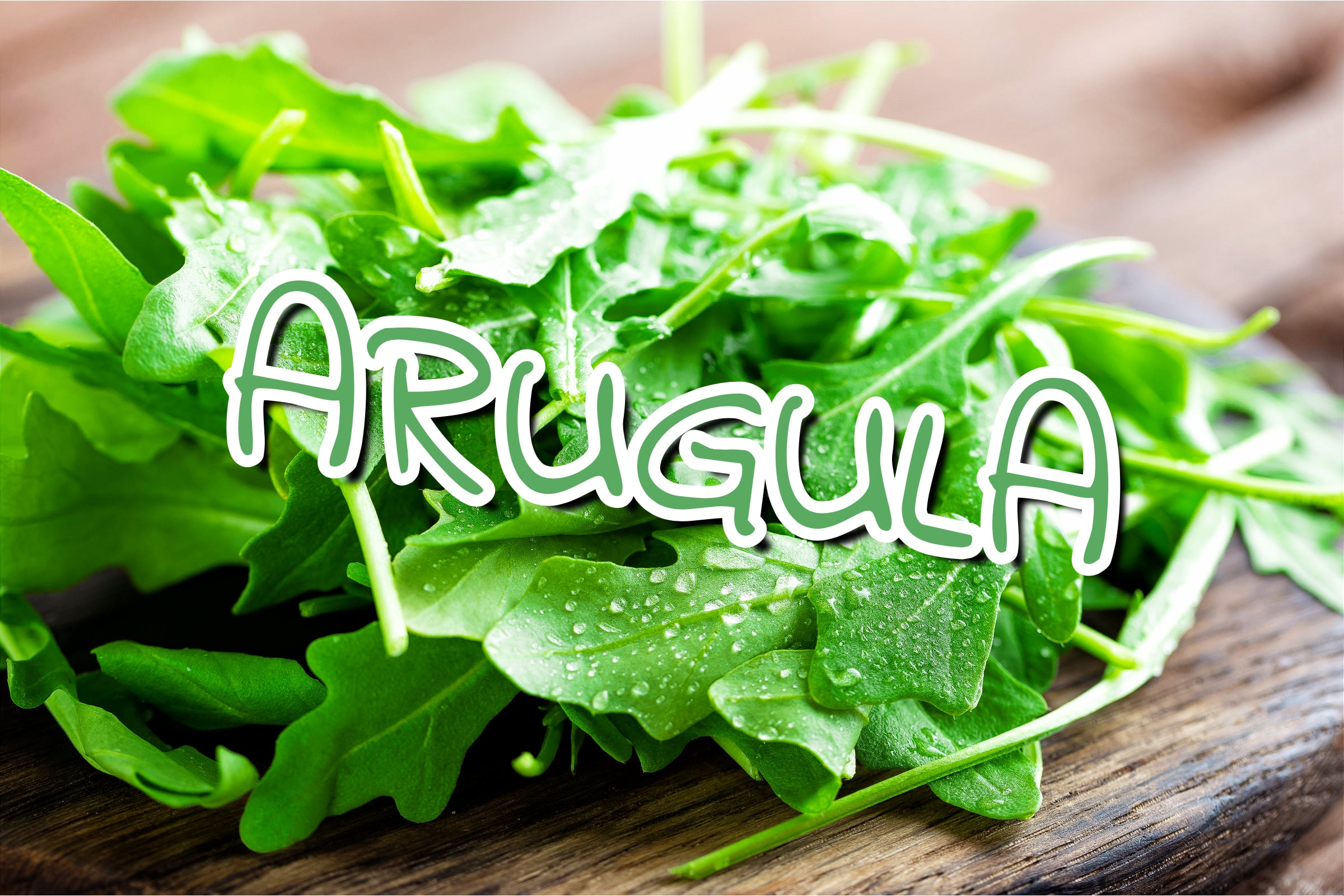 What Is The Arugula Plant?