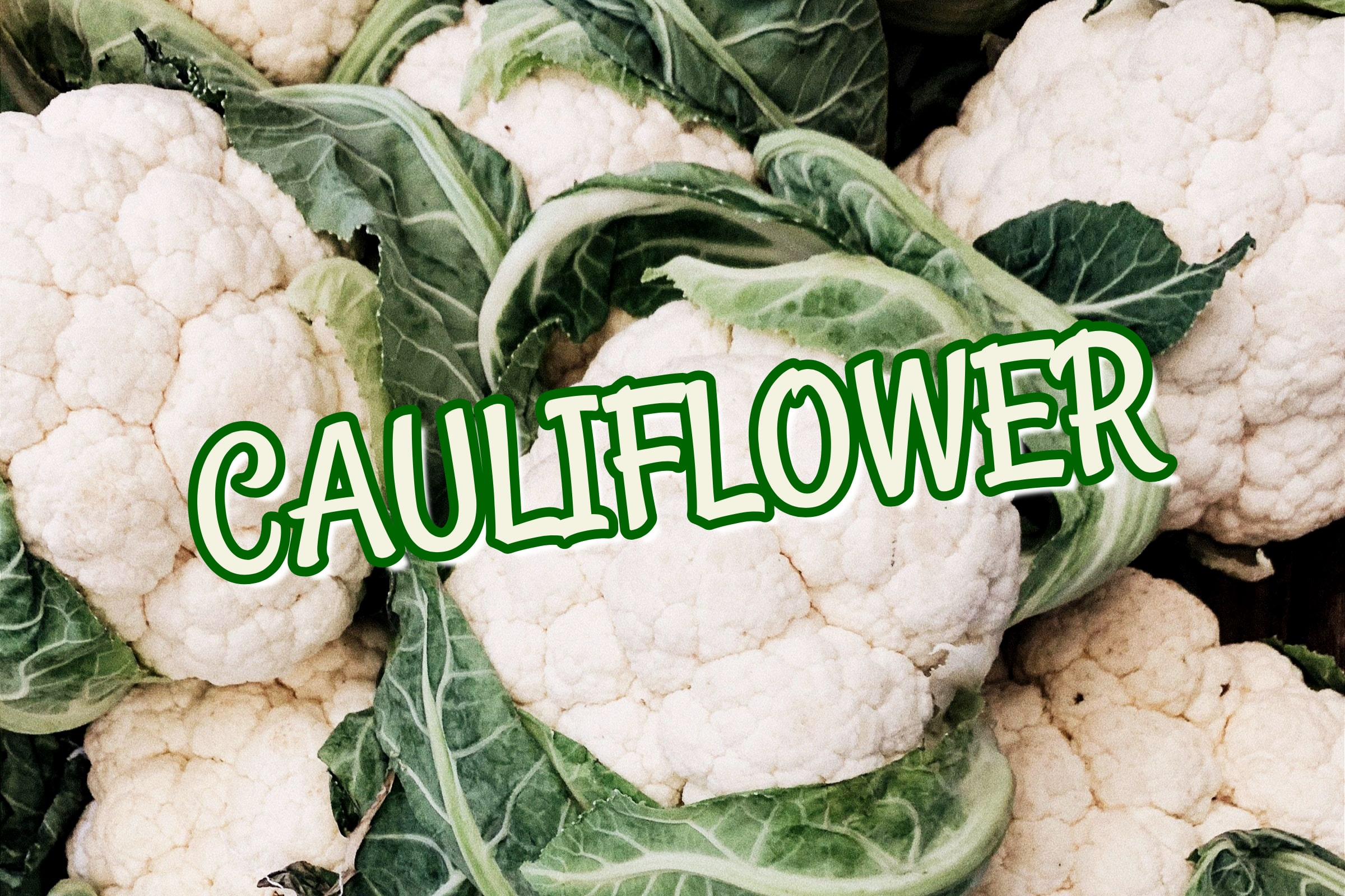 What Is The Cauliflower Plant?