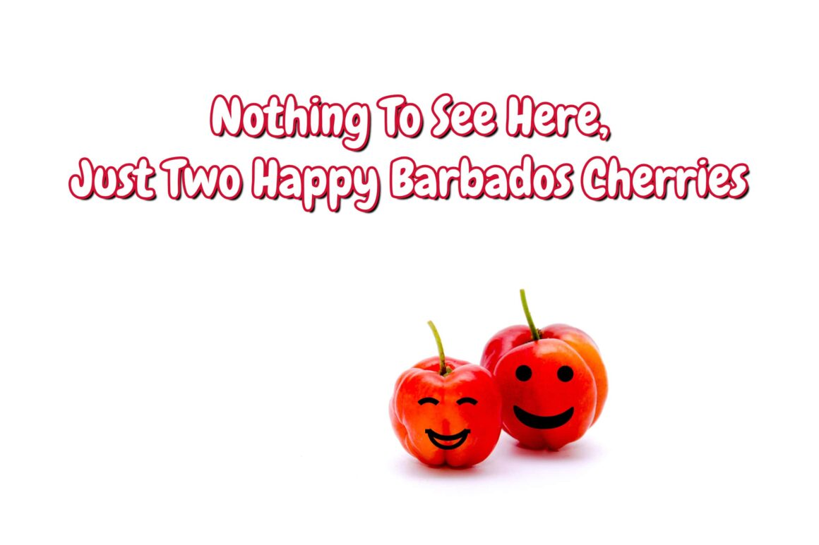 Two Happy Barbados Cherries