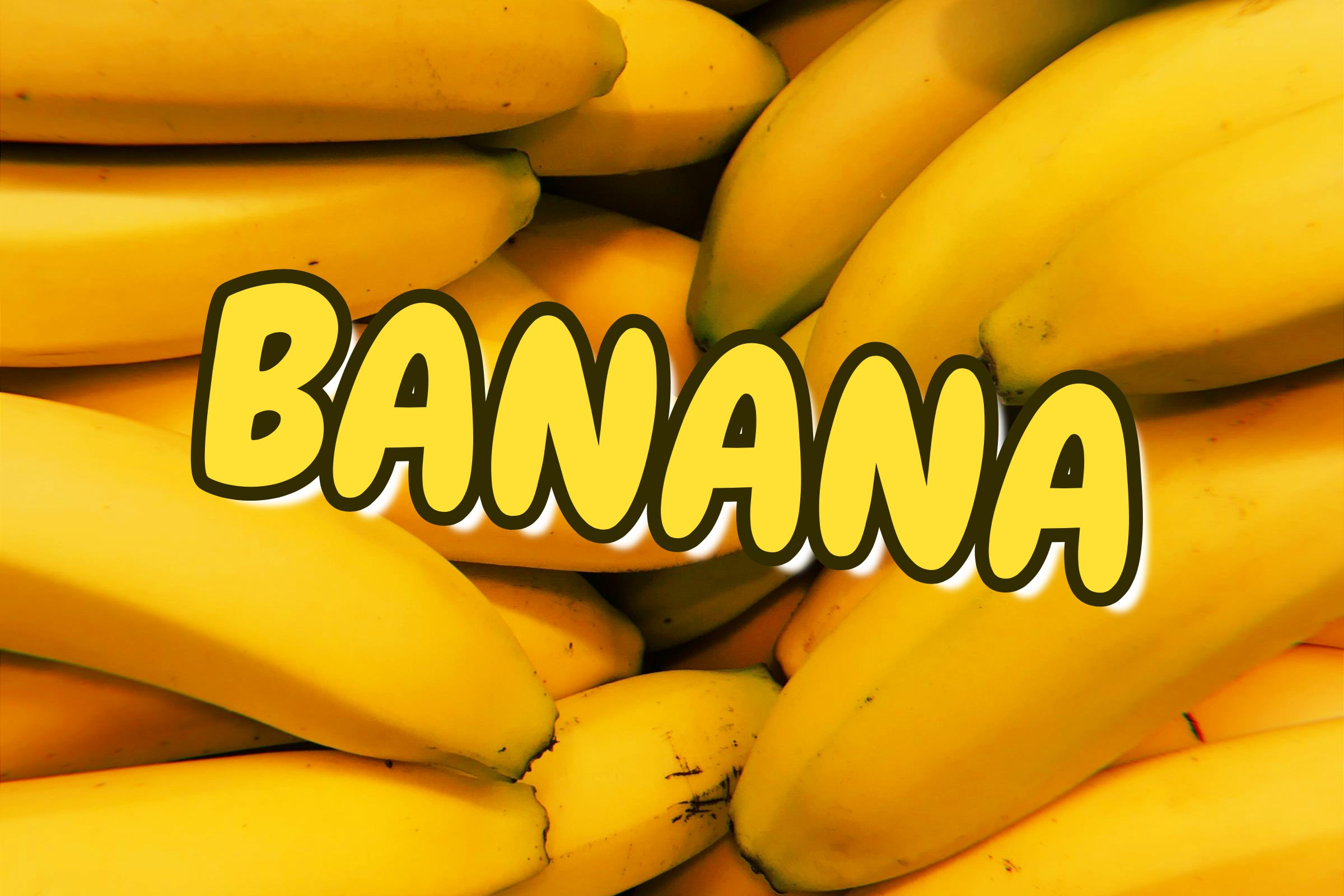 What Is The Banana Plant?
