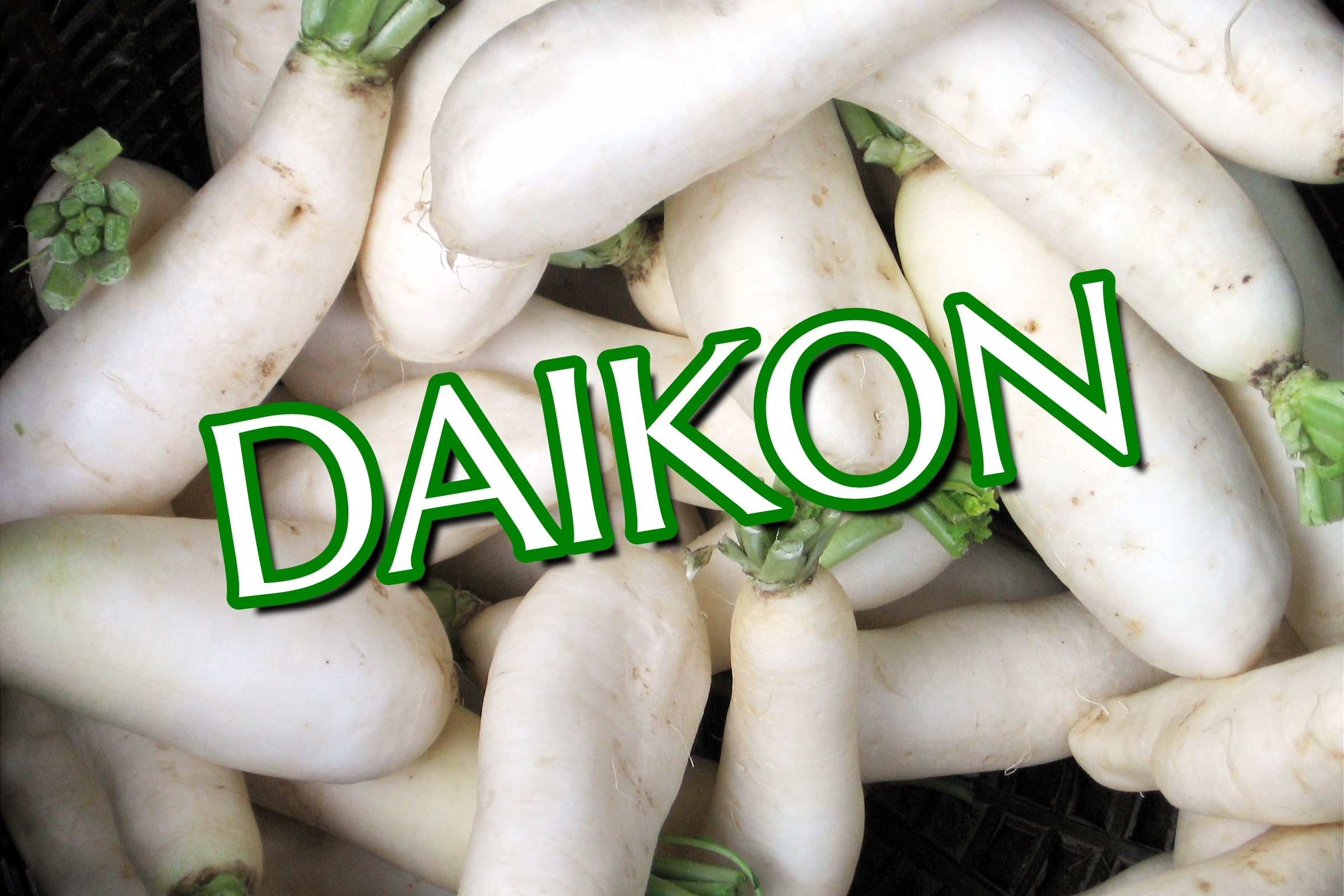 What Is The Daikon Plant?