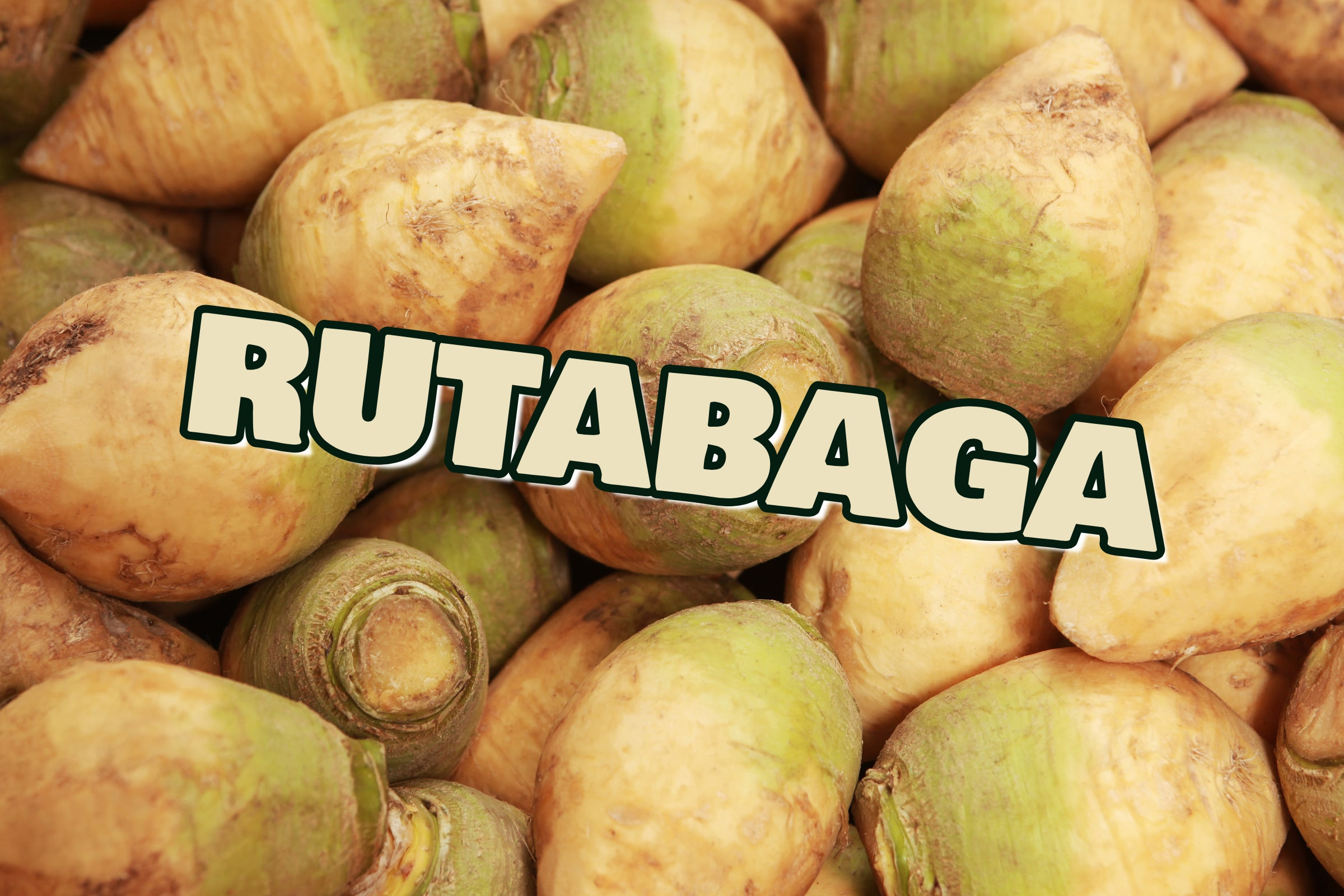 What Is The Rutabaga Plant?