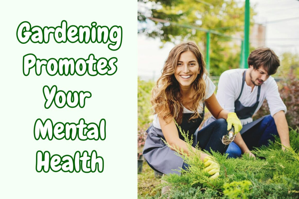 Gardening Promotes Your Mental Health